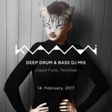 Deep Drum & Bass DJ Mix by Kaami (14, Feb, 2017)