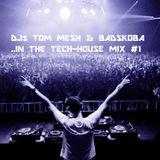 DJs TOM MESH & BADSKOBA in TECH-HOUSE #1