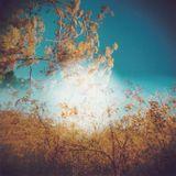 Chris Gavin - Ephemeres sessions Juin 2015 episode 27