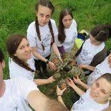 Zašto je važno očuvati populaciju šumskih kornjača?