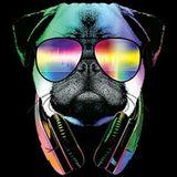 Doggy Stylez - Another Bone