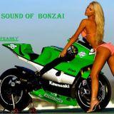 THE  SOUND OF BONZAI