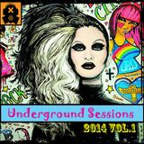 Underground Sessions 2014 Vol.1