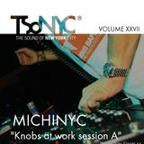 XXVII TSoNYC®   MichiNYC  Knobs at work session A  From Treviso Italy