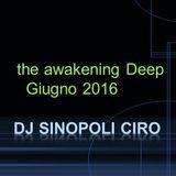 the awakening Deep  Dj Sinopoli Ciro Giugno 2016