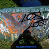 The Sun Is Shinning Down On Us - Ruggidbeats