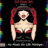 DJ DNA Jah - No Music No Life Mixtape (2K15) (August)
