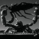 HERRGOTTMORGOTT (The Black Scorpion) @ Periszkóp Rádió 20130818