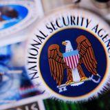 NSA - Die Paradoxie der Überwachungsdemokratie