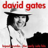 David Hamilton talks to David Gates