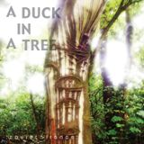 A Duck in a Tree 2013-02-23 | A Cloud Forged in Sparks