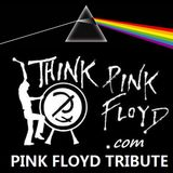 Think Pink Floyd Post West Virginia Show with Al Fink 08/02/2017