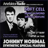 AR056 THE JOHNNY NORMAL SYNTHETIC SPECIAL - SOFT CELL/MARC ALMOND FEATURE