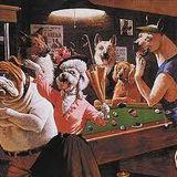 moderndog taswang liga mix
