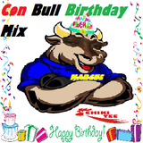 CHIKI TEE - BULL BIRTHDAY MIX