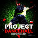 PROJECT DANCEHALL by Reggalatorz (2012 Dancehall Mix)
