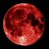 D'Solja - Yin Moon