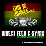 This Is Jungle vol 3 - Direct Feed -Side A