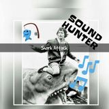 sound hunter