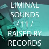 Liminal Sounds Vol.11: Raised By Records