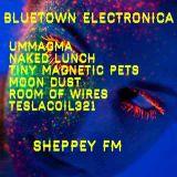 Bluetown Electronica live show 18.01.15