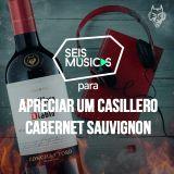 PARA APRECIAR UM CASILLERO CABERNET SAUVIGNON