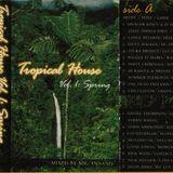 Tropical House Volume 1 Side 1 (Mixtape - February 2000)
