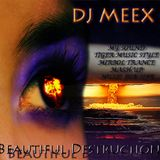 Beautiful Destruction ( Meex )