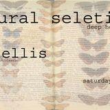 natural selections live.1 jan 2016
