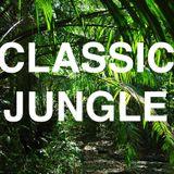 Classic Jungle