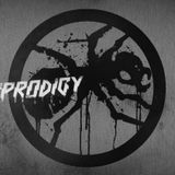 The Prodigy Mix 1991 - 2009 (Vinyl Only Mix)