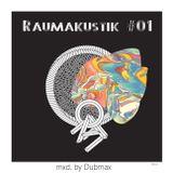 Dubmax - Raumakustik #01