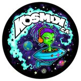 Miss KosmiK Live @ Bushwacked 2014