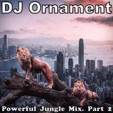 DJ Ornament - Powerful Jungle Mix. Part 2