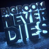 Bigroom Never Dies 1Hour