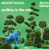 snoop dogg bush in the mix