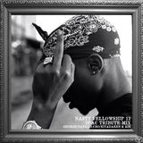 NASTY FELLOWSHIP Vol.12 -2PAC TRIBUTE MIX- / Mixed by DJ GEORGE , TANKO , 3-CHO , KITADAKEN & AIR