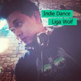 Indie Dance Mix From Liga Wolf