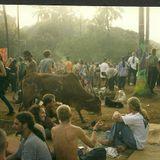 Djdannyc Perception In Goa