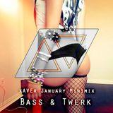 XAVER - January Minimix (Bass & Twerk )