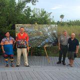 Everglades Alligator Set