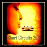 Short Circuits 208 [[I Do it because, I love It]]
