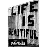 Life is Beautiful Jan 2015 Promo Mixed by Panther