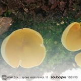 Spore Session Vol. 12 - Soulacybin [10-31-13]