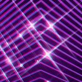 Lavender Disco