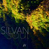 Silvan Soul 17.1