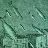 Secret Salmon - Episode 4: Episode 5