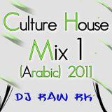 DJ RAW RK_Culture House Mix 1 (Arabic) 2011