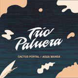 Trio Palmera: Cactuss Portal / Agua Mansa