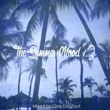 The summer mood V.3 By Chris DOGZOUT